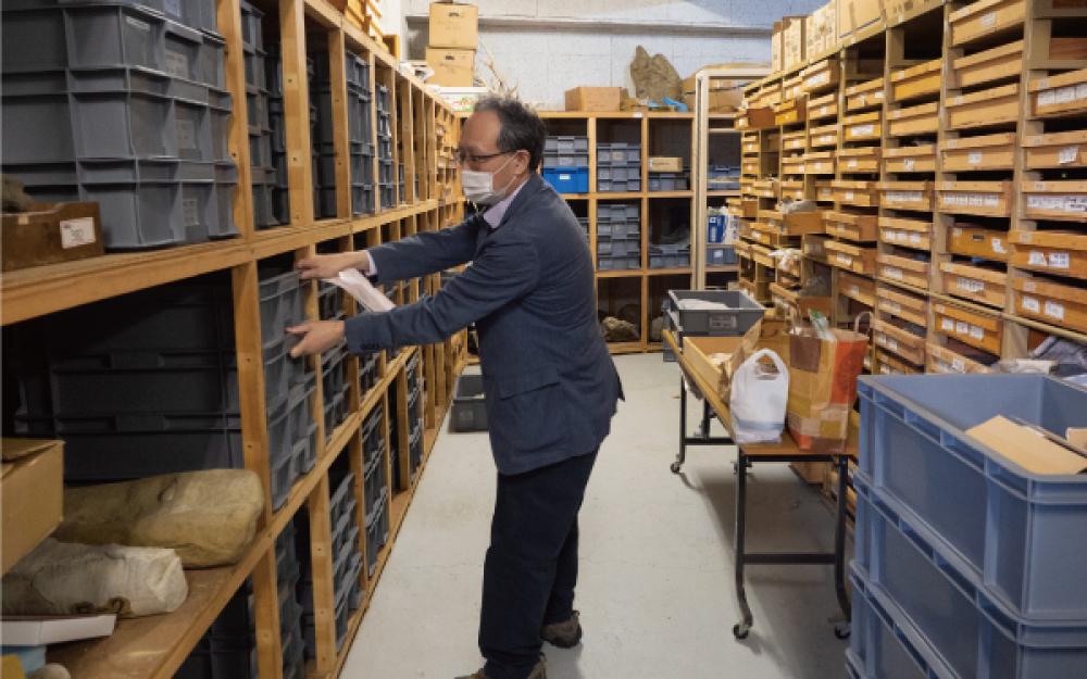 穂別博物館の収蔵庫と櫻井館長
